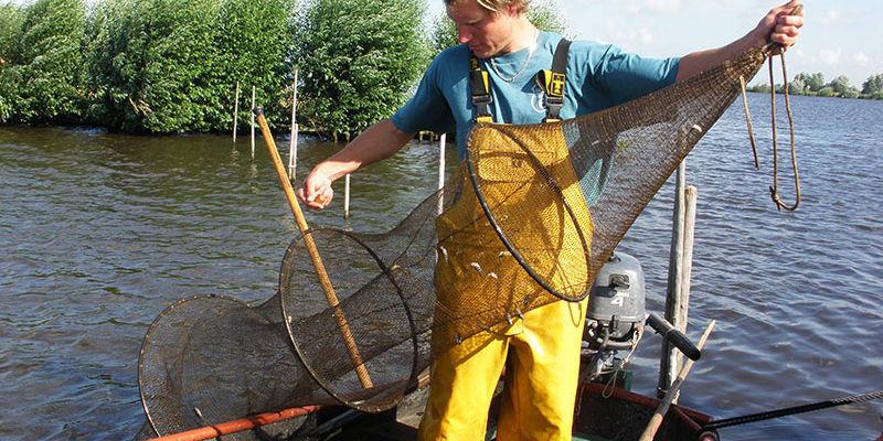 Pesca Delle Anguille